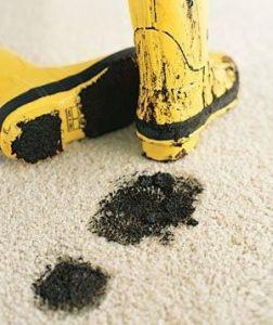 manchas barro en la alfombra