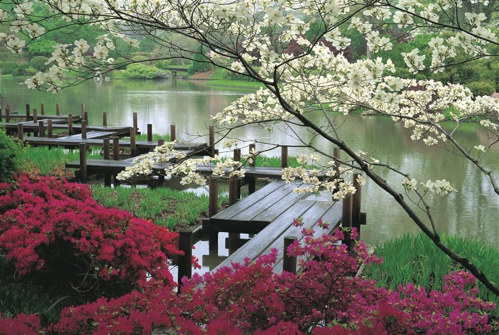 jardin-japones-impresionante-casaymantel