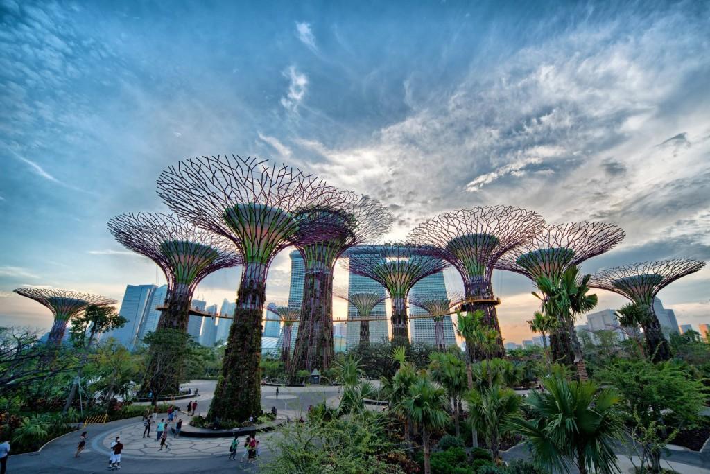 jardin-singapur-enredaderas-casaymantel
