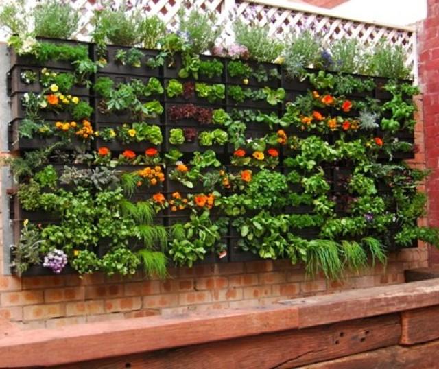 jardin-vertical-decoracion-casaymantel (4)